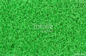 fake grass texture. Artificial Grass Carpet Texture Fake I