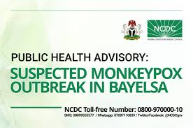 Image result for monkeypox photos