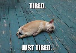 College Kids Need Naps Too via Relatably.com