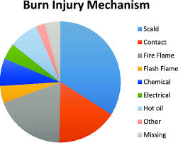 Pie Chart Showing The Mechanism Of Burn Injury Download