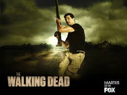 the walking dead images shane walsh hd wallpaper and background photos