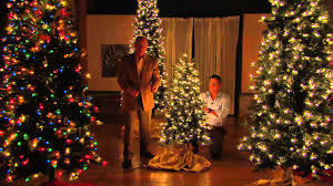 Bethlehem Lights 9' Aspen Pine Christmas Tree w/Instant Power with Dan  Hughes - YouTube