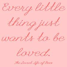 Secret Life Of Bees Quotes Best Every Little Thing Wants To Be Loved Secret Life Of Bees Quote