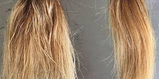 how to repair years worth of damaged hair in just 2 weeks