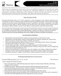 Executive Resume Service – Bhat Dynip Se Executive Resume Service Gallery Of Resume Objective Examples For Sales Executive