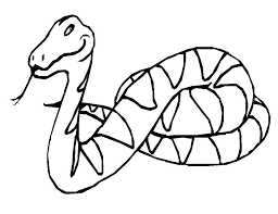 Small Picture Snake Coloring Pages To Print Coloring Coloring Pages