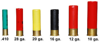 Shotgun Ammunition Shotshells Texas Parks Wildlife