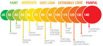 Osha Hearing Protection Chart Hearing Protection