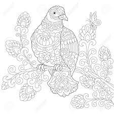 ハト ピジョン 鳥のぬりえフリーハンド スケッチ落書きと Zentangle 要素を持つ抗ストレス大人塗り絵を描画