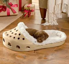 Glamorous Odd Shaped Beds Images - Best idea home design .