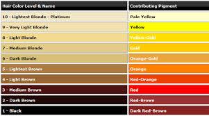Wella Toner Chart For Orange Hair Www Bedowntowndaytona Com