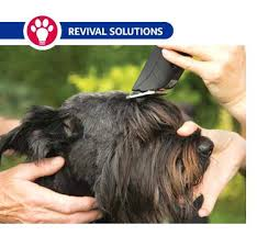 Andis Dog Groomer Clippers Blades Grooming Australia