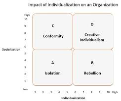 leadership and organizational behavior impact of individualization on an organization