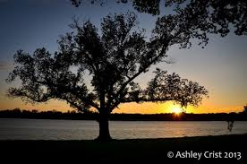 Ashley Crist (300823490) on Myspace