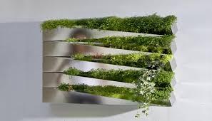 indoor kitchen garden. Silver Mirror Metallic Salad Wall Indoor Kitchen Herb Garden Miroir En Herbe