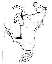 Small Picture Horse Coloring In Pictures Coloring Pages
