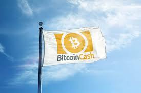 Facebook twitter linkedin tumblr pinterest reddit. List Best Bitcoin Cash Predictions For 2020 Cryptocointrade