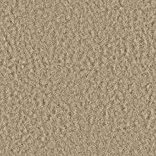 cream carpet texture. Thebridgesummitco Cream Carpet Texture Seamless White Soft Iskanje Google Do Pinterest Fur