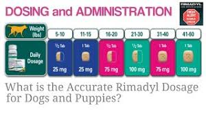 What Is The Accurate Rimadyl Dosage For Dogs And Puppies