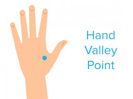 Hand Pressure Points Chart And Uses