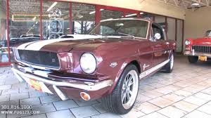 1965 Ford Mustang Fastback GT350 for sale with test drive, driving ...