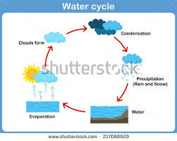 Flow Chart On Water Cycle 10 Basic Water Cycle Diagram Blank Diy Enthusiasts Wiring