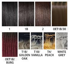 Janet Collection Wig Color Chart Janet Collection Extended Part Lace Braid Lana Wig