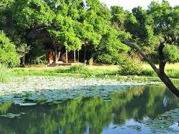 Nature Resorts In Sri Lanka Eco Hotels In Sri Lanka Eco Resorts