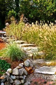 Home Garden Design Software Remodelling Interesting Decoration