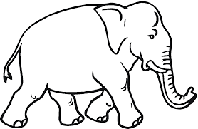 asian elephant clipart coloring page 1