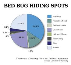 Size Of Bed Bugs Chart Bed Bug Pest Control Services Exterminators In Maryland