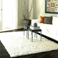 area rug cleaners best rated area rug cleaner top rated area rugs rug brands area rug cleaners