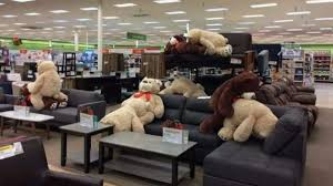 PHOTO NSFW Naughty Teddy Bears Caught in Positions in Store