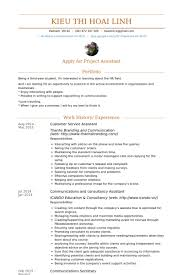Customer Service Assistant Resume Samples Visualcv Resume Samples