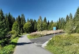 Image result for šumava léto