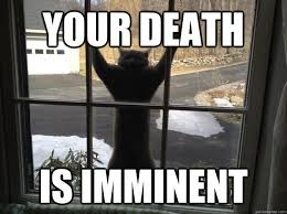 Your death is imminent - Attack Cat - quickmeme via Relatably.com