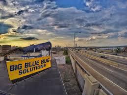 Big Blue Bug Solutions