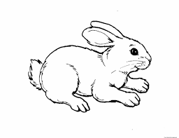 Small Picture Baby Animal Coloring Pages Free Coloring Pages