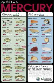 Useful Reference Chart In Regard To Fish And Their Mercury