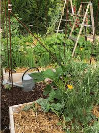 mulch is important in the arizona vegetable garden during the summer