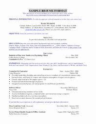 Nice Resume Format New Stylish Ideas Example Resumes Nice Resume
