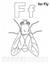 Popular Fly Coloring Page 18 #9216