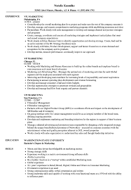 Vp Marketing Resume Samples Velvet Jobs