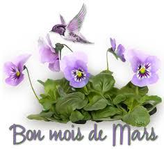 """Résultat de recherche d'images pour """"bonjour mois de mars"""""""