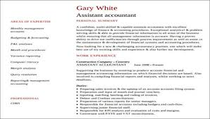 Accountant Resume Format Mesmerizing 44 Accountant Resume Formats Sample Templates