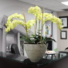 office flower arrangements. Silk-orchids-for-offices-life-indoors Office Flower Arrangements A