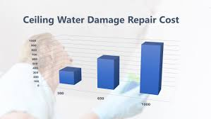 how much does ceiling water damage repair cost
