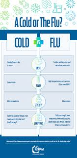 Flu Cold Symptoms Chart The Difference Between A Cold And The Flu Uspm