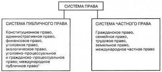 Государство и право Новые тенденции в развитии российской системы  Система права
