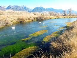 Armstrong Spring Creek On The Ohair Ranch Yellowstone Angler